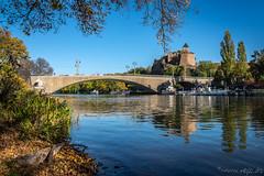 Herbstspaziergang ... (Norbert Helbig) Tags: nikon d7200 deutschland germany sachsenanhalt halle saale herbst autumn fluss wasser outdoor burg giebichenstein