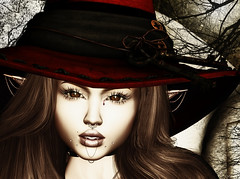 Lil Witch (FlashMe Photography) Tags: sl secondlife witch costume halloween ro stealthic ikon maitreya catwa swallow avatar scary