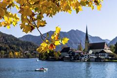 Deutschland (Germany), Bayern (Bavaria), Tegernsee, Rottach-Egern, Herbst (Autumn), (St/W) Tags: herbst autumn bayern bavaria tegernsee rottachegern leicam leicam9p leicaaposummicron2050asph nikcep4
