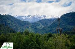 _DSC6500 (Rutas Patagónicas) Tags: patagonia rutaspatagónicas ruta 231 lago yelcho región de los lagos agenciaschaefer