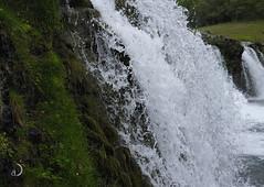 Selfoss (bd168) Tags: chute waterfall water trees landscape islande iceland xf27mmf28 travel voyages xt10