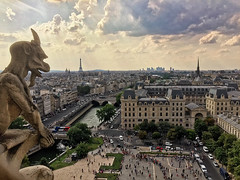 Notre Dame cathedral_cityscape (abtabt) Tags: france paris iphone6 church cathedral catholiccathedral architecture parisbanksoftheseine worldheritage notredame notredamedeparis sculpture overlook cityscape pano skyline