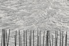 Water And Metal (pni) Tags: monochrome water metal rod rebar bar reinforcingbar sea sompasaari sumparn kalasatama fiskehamn helsinki helsingfors finland suomi pekkanikrus skrubu pni
