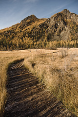 Altay, road to Geyser Lake (ferggren) Tags: altay altai wild nature landscape landscapes travel moody mountains mountain mountainscapes 17mm wideangle wide ultrawide ultrawideangle autumn russia