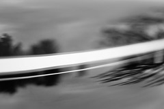 Circling the Storm (belleshaw) Tags: blackandwhite murrietarodrun carshow classiccar pinstripes hood reflections paint shine trees sky abstract detail bokeh
