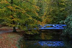 Elswout (Julysha) Tags: elswout bridge autumn dxo october 2018 park thenetherlands noordholland canal trees d850 reflection sigma241054art