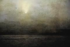 Morning Flight (delmarvajim) Tags: digitalart digitalprocessing digitaleffects digitalpainting fineart birds gulls fog harbor dawn texture drama water cityscape morning