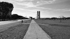 Wrong way (André Felipe Carvalho) Tags: preto branco brasilia