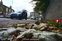 Autumn in Morley. (Please follow my work.) Tags: autumn automobile brilliantphoto candid colour car england excellentphoto flickrcom flickr google googleimages gb greatbritain greatphotographers greatphoto image interesting leeds ls27 mamfphotography mamf morley morleyleeds nikon nikond7100 northernengland onthestreet photography photo photograph photographer quality qualityphotograph road sex street leaves traffic tree travel uk unitedkingdom upnorth urban victoriaroadmorley westyorkshire yorkshire thenelsoninnmorleyls27 lowpov lowpointofview