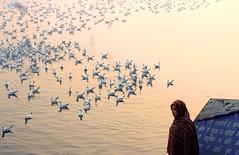 Yamuna Ghat (irrfanazam) Tags: winter women street photography culture hinduism spiritual ghar morning sun water river birds india delhi yamunaghat flickrtravelaward