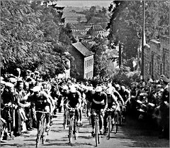 1938 WCRC Valkenburg (Sallanches 1964) Tags: worldchampionshiproadcycling cauberg valkenburg 1938 roadcycling beforethewar othertimescycling peloton nationalteams