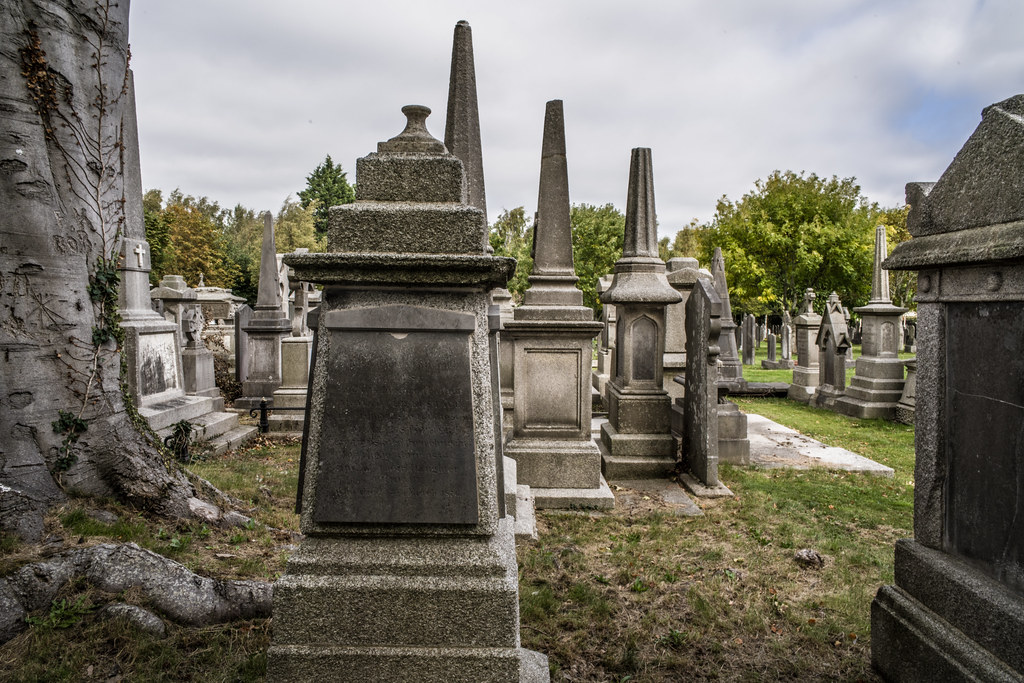 SEPTEMBER 2018 VISIT TO GLASNEVIN CEMETERY [ I USED A BATIS 25mm LENS AND I EXPERIMENTED WITH CAPTURE ONE]-144806