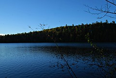 Pink Lake Trail (Pwern2) Tags: pinklake gatineaupark gatineau discovergatineaupark fall fallcolours fallseason autumn autumnfoliage leaves beautifulcolours colours lake beauty nature landscape treesnotpeople preservenature explore exploring adventure fallfoliage foliage outdoors pinklakefamily ncc nationalcapitalcommission meromictic greenlake hiking pinklaketraillookout turquoise turquoiselake