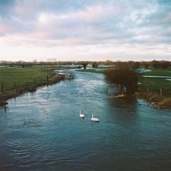 The River Thame at Ickford Bridge (cycle.nut66) Tags: agfa super isolette ickford bridge draycot river thame february late afternoon before sunset sky clouds water swans landscape flood winter crisp solinar 7535 kodak 160 porta film scan analogue
