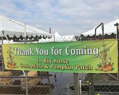 034 Thanks For Coming (saschmitz_earthlink_net) Tags: 2018 california temecula bighorsefeedandmercantile cornmaze orienteering laoc losangelesorienteeringclub corn