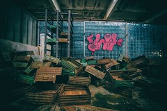 6 (tbolt-photography.com) Tags: d750 derp derpy derelict derelictbuildings derelictplaces decay abandoned abandonedplaces abandonedbuildings pripyat urbex urbandecay urbanexploration urbanexplore ukraine chernobyl radiation exclusion zone