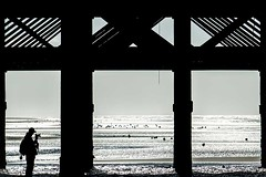 under the pier 2 (photoautomotive) Tags: blackpool lancashire northwestengland england uk europe silhouette photographer tog waves water sea sky pier metal monochrome man sand sandybeach canon7d 35350l zoom beach