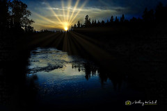 Temperance RIver Silouette at Dusk #2 - FINAL-AKP 2018 (Anthony Kosobud - Photography) Tags: minnesota kosobud anthonykosobud sony skylum zeiss