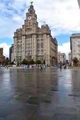 The Royal Liver Building, Liverpool (Manoo Mistry) Tags: nikon nikond5500 tamron tamron18270mmzoomlens liverpool merseyside northwest sky liverbuilding