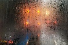 4 Yellow Lights (Coquine!) Tags: christianleyk london unitedkingdom greatbritain battersea wandsworth bus doppeldecker lights indicators rearlights rain regen glass glas wet nass