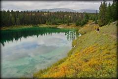 Autumn walk (Jasper NP, Canada) (armxesde) Tags: pentax ricoh k3 canada kanada jasper jaspernationalpark rockymountains alberta mountain berg lake see wasser water spiegelung reflection valleyoffivelakes tree baum