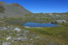 une jolie petite gouille (bulbocode909) Tags: valais suisse nendaz lacdugranddésert gouilles rochers montagnes nature eau paysages reflets vert bleu