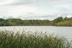 Will be back in Autumn (Arijit_Roy) Tags: grass nature lake water clouds peace toronto
