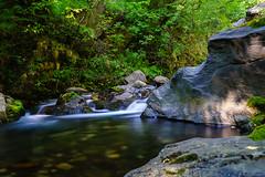 river in time (Plamen Troshev) Tags: river bulgaria balkan waterfall water tree trekking travelling new nature pool rocks stone