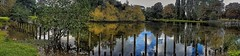 A powerful reflection!😊 (LeanneHall3 :-)) Tags: panorama lake woodenposts reflection trees green leaves branches greenery autumn blue skyscape sky white clouds cloudsstormssunsetssunrises eastpark hull kingstonuponhull landscape samsung groupenuagesetciel