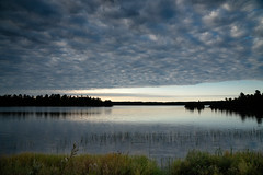 Shagawa Lake at Sunset 20180919-DSC00518 (Rocks and Waters) Tags: a6500 ely lake northernminnesota shagawalake zeiss clouds landscape nature rocksandwaters sony sonyalpha sunset trees variotessare1670 water minnesota blue bluehour
