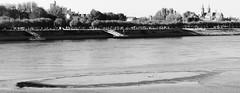 Sandbank vor Worms (four-hearts) Tags: sandbank natur landschaft schwarzweis worms wo rheinhessen hessen rheinlandpfalz rhein strom fluss herbst promenade niedrigwasser liebfrauenkirche architektur