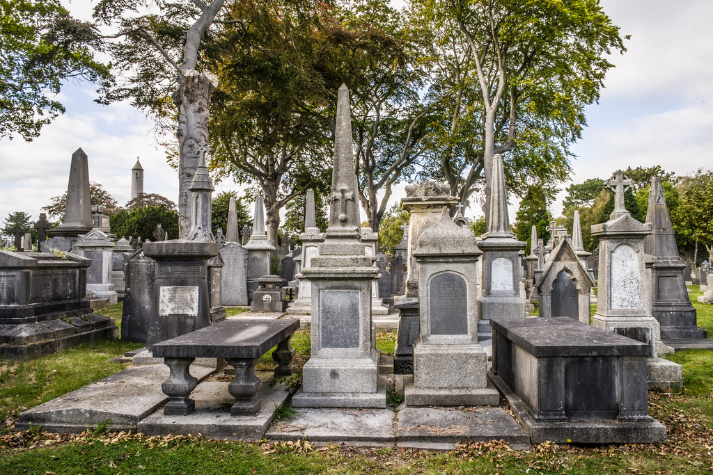 SEPTEMBER 2018 VISIT TO GLASNEVIN CEMETERY [ I USED A BATIS 25mm LENS AND I EXPERIMENTED WITH CAPTURE ONE]-144768