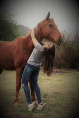 Portrait of a girl and her beloved horse (alestaleiro) Tags: hugahorse6 horse girl hug caballo cavalo cavallo cheval vintage alestaleiro