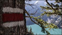 _SG_2018_09_0010_IMG_9773 (_SG_) Tags: schweiz suisse switzerland daytrip tour wandern hike hiking kandersteg lake oeschinen oeschinensee upper station heuberg panorama unterbärgli oberbärgli nature aussicht view unesco world heritage trail mountain berge loop