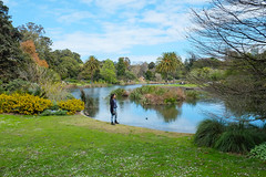 Hanging out at the Royal Botanical Gardens (Marian Pollock) Tags: australia melbourne gardens royalbotanicalgardens lake trees bushes girl person reflections clouds grass lawn victoria duck reeds palms people flowers