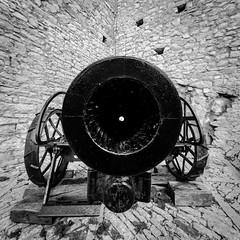 Cannon shot with Canon (tom.leuzi) Tags: 11mm bw blackstone canoneos6d irix italia italien italy sicilia sicily sizilien uwa blackandwhite irix11mmf40 irix11mmf40blackstone monochrome schwarzweiss ultrawideangle cannon historic old museum castellodicaccamo caccamo castle explored