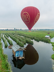 Hot air balloon over floating gardens of Lake Inle - Myanmar (Phil Marion) Tags: malay thai thailand asian oriental philmarion candid woman girl boy teen 裸 schlampe 나체상 벌거 desnudo chubby nackt nu ヌード nudo khỏa 性感的 malibog セクシー 婚禮 hijab nijab telanjang nude slim plump tranny sex slut nipples ass boobs tits upskirt naked sexy bondage fuck tattoo fetish erotic cameltoe feet cock desi japanese african khoathân latina khỏathân beach public swinger cosplay gay wife dick milf crossdress ladyboy pussy babe moslem islam