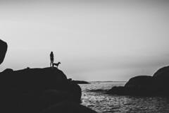 Welthundetag (mripp) Tags: art vintage retro old silhouette black white mono monochrom sea ocean mood moody atmosphere dogs sony alpha 7rii voigtlander nokton 40mm f12