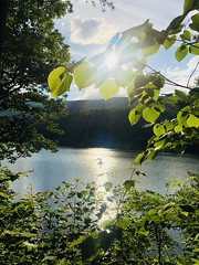 Get outdoors photo contest entries from Douthat State Park (vastateparksstaff) Tags: scenic inspiring sunlight sunset lake mountains trees