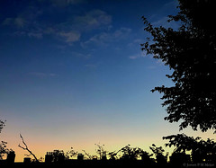 07:31 11.10.18 (jpmm) Tags: 2018 amsterdam sunrise zuid wolken clouds stratus cumulus