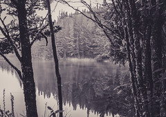 Memorias de viaje (Beto.Turelli) Tags: lake reflejo reflection forest water trees grass mountain landscape wallpaper blackandwhite blancoynegro travel viaje paisaje
