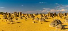 An alien landscape... (sarahOphoto) Tags: nambung westernaustralia australia au limestone pillars pinnacles national park landscape yellow sand dune sky clouds blue nature western oz tourist travel traveller spires rock geology desert