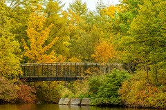 Bowring Park (Karen_Chappell) Tags: bowringpark park autumn fall october nature bridge trees stjohns newfoundland nfld canada atlanticcanada avalonpeninsula eastcoast pond water green orange colourful colours colour color scenery scenic landscape