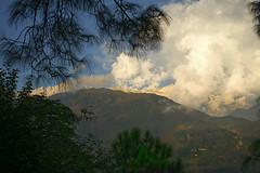 View near Dharamsala (DmitryK68) Tags: himalayas dharamsala mountains mountain india