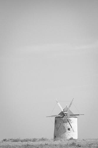 Windmill, Tés