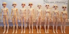 Minifee Body Comparison (Niisan_Obsessed) Tags: minifee mnf fairyland msd bjd body aline moeline motionline fairyline cutielegs modellegs muscle boy girl comparison