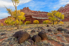 Capitol Reef National Park, Utah (ttchao) Tags: nikon d810 2470mm capitolreefnationalpark utah torrey fallcolors fallfoliage ngc