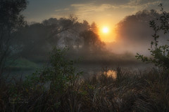 marshland sunrise (Hans Zitzler) Tags: river swamp marshland sunrise dawn sun tree morning