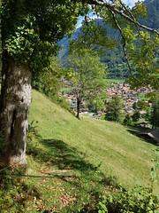 Wilderswil scenes 107 (SierraSunrise) Tags: switzerland wilderswil europe path trail