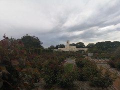 2018-10-FL-196783 (acme london) Tags: cemetery graveyard landscape park sydney woronora